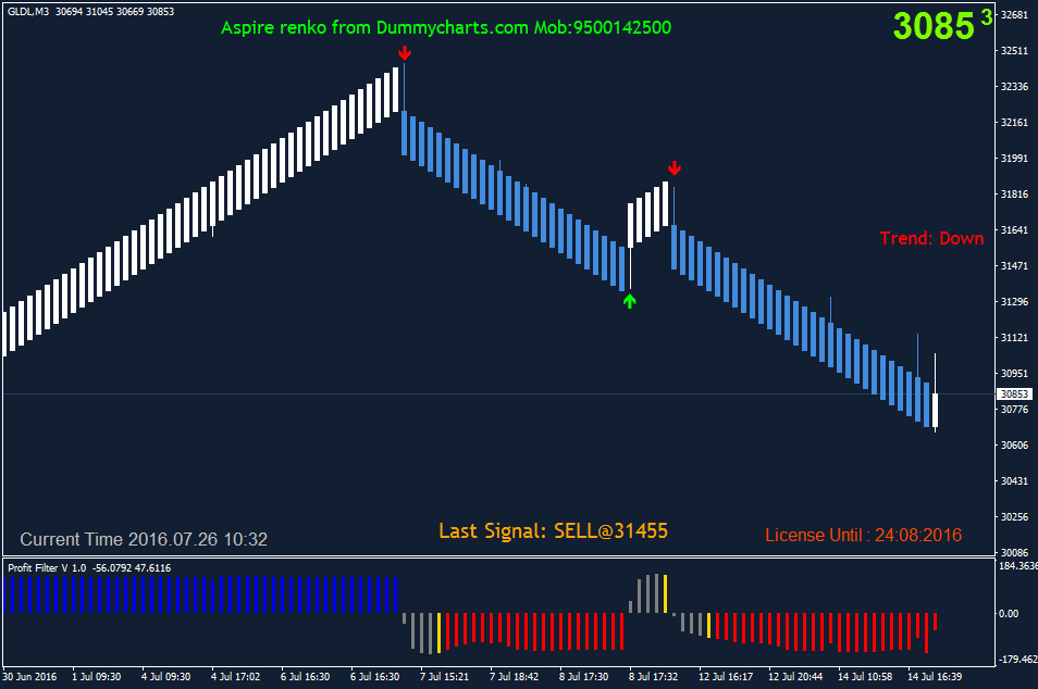 MCX Silver Renko charts with Buy sell signals